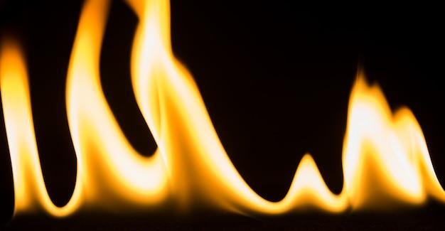 Il fuoco alto vicino isolato dell'estratto fiammeggia su fondo nero.