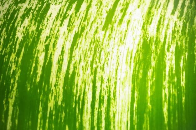Primo piano astratto di bella foglia di banana verde della natura che utilizza come concetto della pagina della carta da parati del fondo.