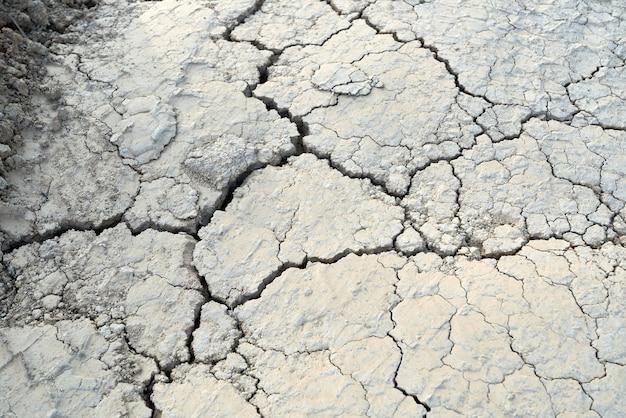 Terreno crepa astratto nella stagione secca.