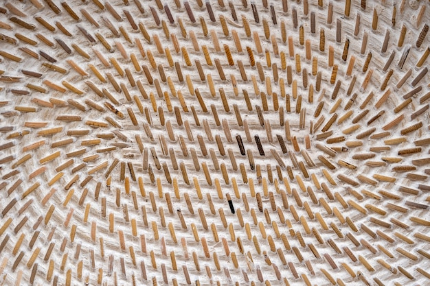 Intreccio di canestro strutturato in legno decorativo astratto. fondo di struttura del cestino, fine su. fondo o struttura orizzontale di vimini naturale astratto