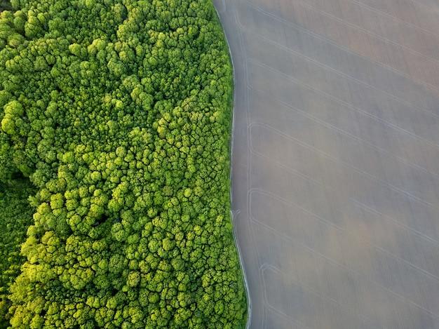 Forme geometriche astratte di campi agricoli, predisposti per lavori di piantumazione e area forestale piantumata con alberi separati da strada nei colori verde e nero. vista aerea dal drone.