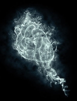 Cuore umano astratto in un fumo su sfondo nero