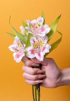 Composizione astratta di salute sessuale con fiore