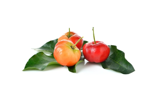 Frutto acerola su sfondo bianco