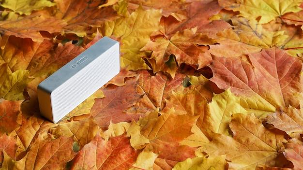 Piccola colonna sonora acustica sulla superficie delle foglie d'acero autunnali luminose
