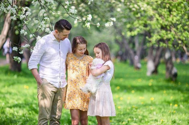 Adorabili bambine con un giovane padre in un giardino di ciliegi in fiore in una bella giornata di primavera