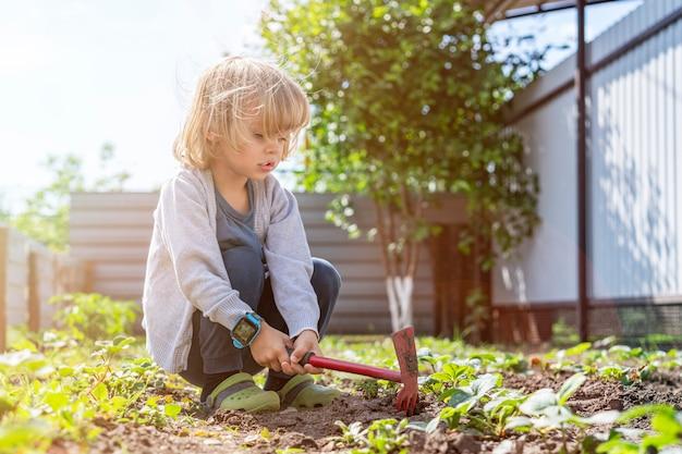 Adorabile ragazzino che aiuta i genitori a coltivare verdure e divertirsi.