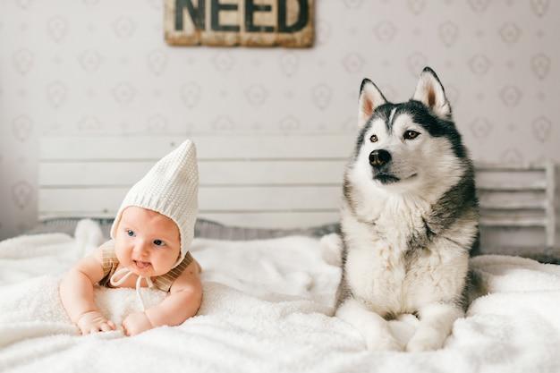 Neonato adorabile adorabile che si trova sul letto bianco con il bello husky.