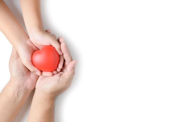 Mani dell'adulto e del bambino che giudicano cuore rosso isolato