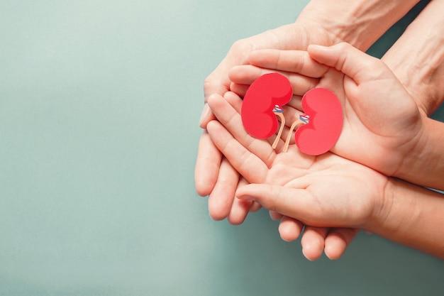 Adulto e bambino in possesso di carta a forma di rene su sfondo blu con texture, giornata mondiale del rene, giornata nazionale dei donatori di organi, concetto di donazione di beneficenza