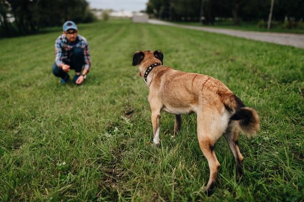 Uomo alla moda adulto che gioca con l'animale domestico. famiglia all'aperto. amante degli animali. cane felice che gode della libertà. il cucciolo di allevamento terrier si diverte con il proprietario. addestramento canino pazzo peloso alla natura. amici insieme.