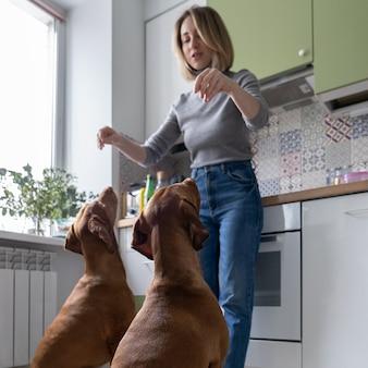 La donna adulta si diverte con due cani che addestrano animali domestici in cucina durante la quarantena dell'epidemia di coronavirus