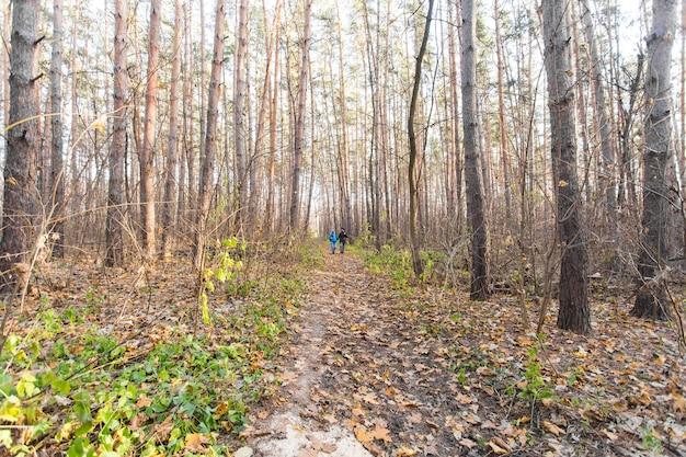 Concetto di avventura, viaggi, turismo, escursione e persone - coppia che cammina con gli zaini sulla scena naturale autunnale