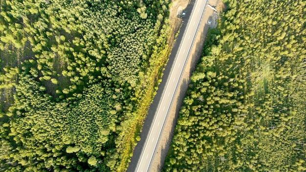 Vista aerea di volo di uccelli sopra una strada di campagna vuota senza auto tra la foresta verde in giornata di sole.