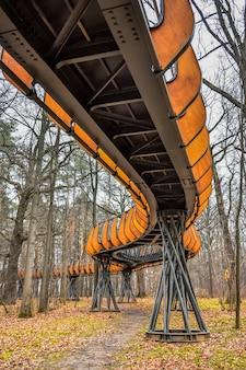 Sentiero di legno del parco ecotropico aereo nel sentiero aereo del parco ecotropico della foresta di autunno
