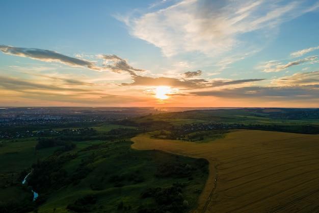 Vista aerea del paesaggio del campo agricolo coltivato giallo con grano maturo in una vivace serata estiva.