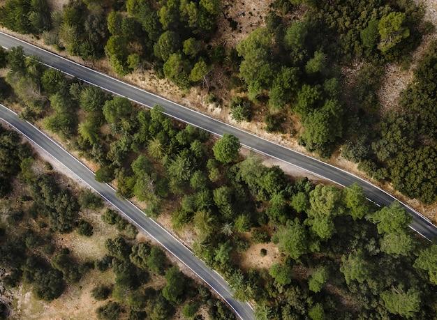 Vista aerea del paesaggio delle foreste
