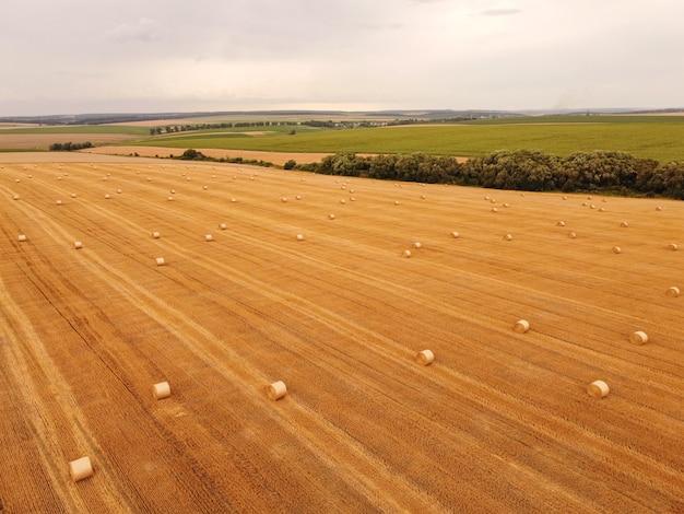 Vista aerea dall'alto in basso raccolto rotoli di paglia di grano in campo
