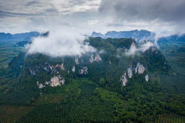 Vista aerea dall'alto di montagne e palme con cielo drammatico