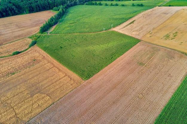Vista aerea dei campi agricoli e verdi in campagna