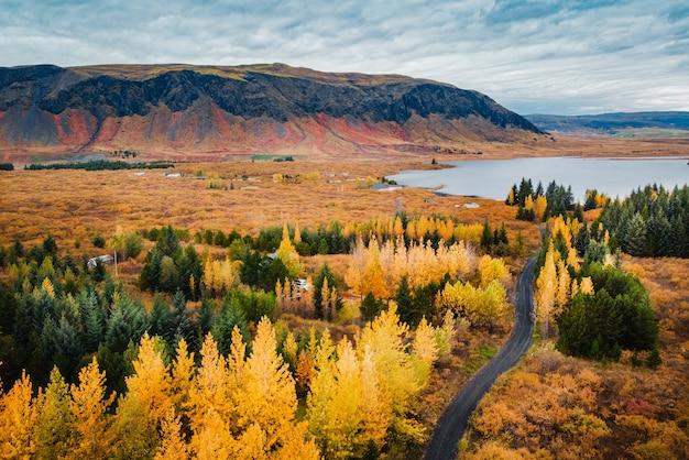 Vista aerea foresta autunnale sullo sfondo di alte montagne e lago, iceland
