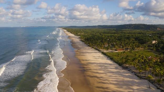 Vista aerea della spiaggia con palme da cocco sulla costa di ilheus bahia brasile.