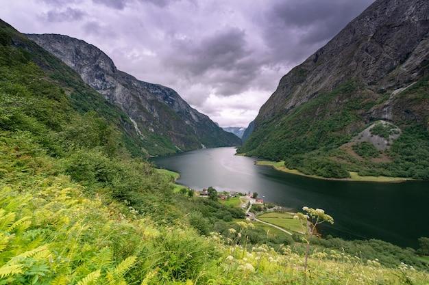 Vista aerea di un bellissimo fiordo norvegese, il sognefjord, verticale.