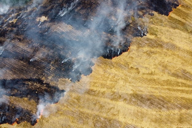 Vista aerea di stoppie bruciate con fumo nel campo dell'azienda agricola