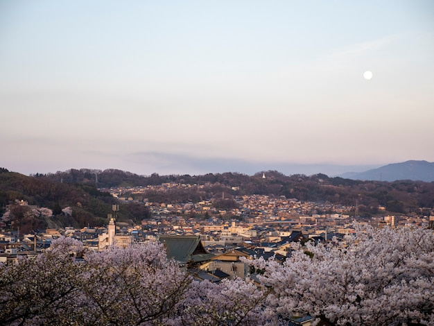 Vista aerea del fiore di ciliegia nella città di kanazawa dal giardino giapponese tradizionale di kenrokuen