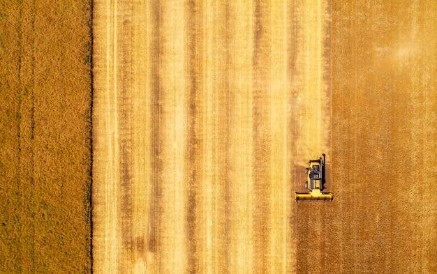 Vista aerea della mietitrebbiatrice la raccolta del grano. bellissimo campo di grano.