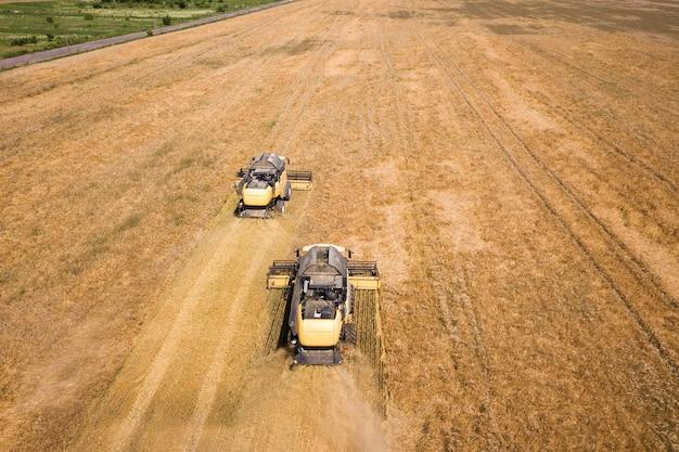 Vista aerea delle mietitrebbiatrici che raccolgono il grande campo di grano maturo giallo.