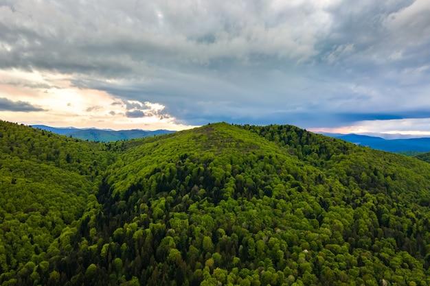 Vista aerea delle colline scure della montagna coperte di pino misto verde e di una foresta lussureggiante in serata.
