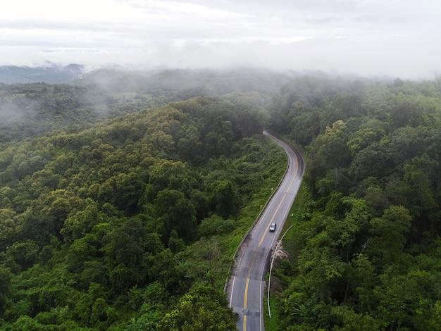 Vista aerea strada nebbiosa foresta albero ambiente natura sfondo, nebbia sul paesaggio nebbioso vista dall'alto foresta verde la collina dall'alto, strada dell'albero di legno a priorità bassa della montagna