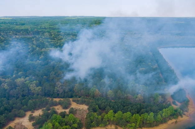 Vista aerea di incendi boschivi in primavera fuoco nell'erba secca degli alberi nella foresta.