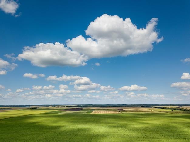 Vista aerea dal drone di un pittoresco paesaggio con vegetazione di alberi, campi agricoli e prati sullo sfondo del cielo nuvoloso in una giornata di sole.