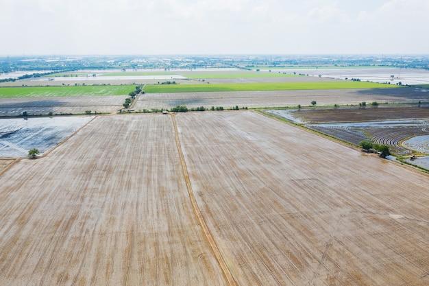 Vista aerea dal drone volante del riso di campo con il fondo della natura del modello verde del paesaggio, riso del campo di vista superiore