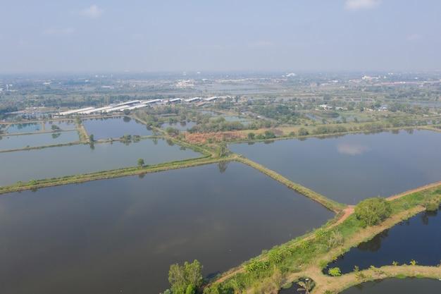 Vista aerea dal drone volante del laghetto, allevamento ittico