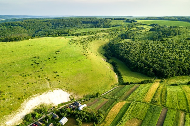 Vista aerea di verdi campi agricoli in primavera con vegetazione fresca dopo la stagione di semina in una calda giornata di sole.