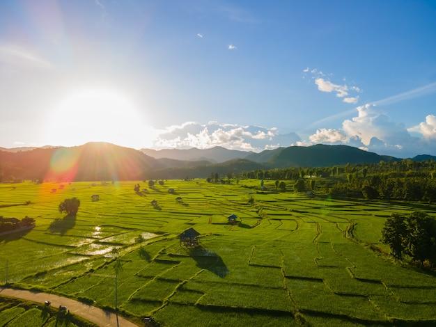 Vista aerea del campo di piantine di riso verde durante il tramonto sopra la montagna con cielo blu in thailandia