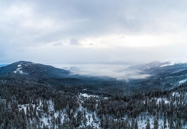 Vista aerea del paesaggio mistico di una foresta di montagna invernale in una giornata gelida e nuvolosa.
