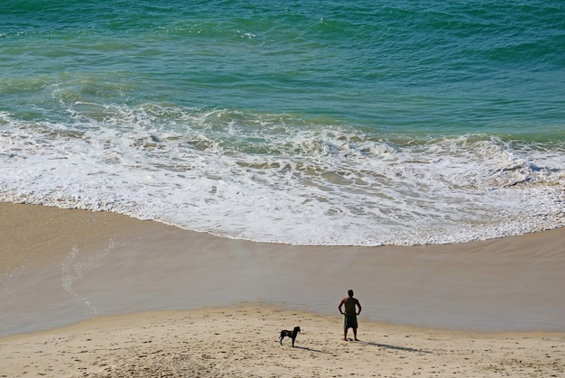 Vista aerea di persone con il suo cane che si rilassano sulla spiaggia sabbiosa alla luce del sole del mattino