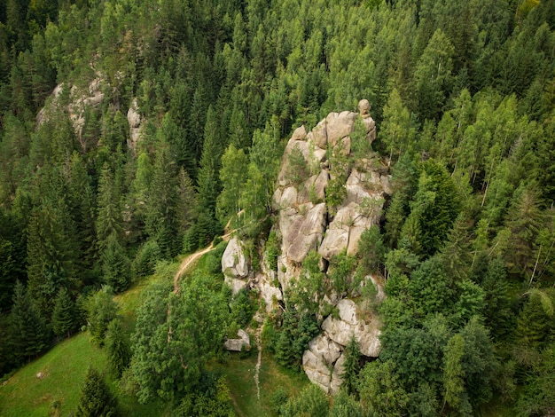 Vista aerea di una roccia pittoresca situata fra la foresta attillata nelle montagne