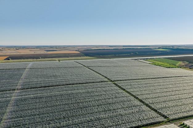 Vista aerea della serra di plastica sul meleto. coltivazione di piante in agricoltura biologica.