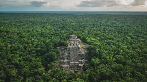 Vista aerea della piramide, calakmul, campeche, messico. rovine dell'antica città maya di calakmul circondata dalla giungla