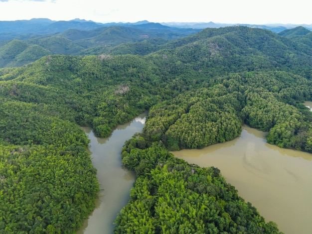 Vista aerea fiume foresta natura bosco area verde albero, vista dall'alto fiume laguna stagno con acqua blu dall'alto, isola verde foresta bellissimo ambiente fresco paesaggio giungle lago villaggio
