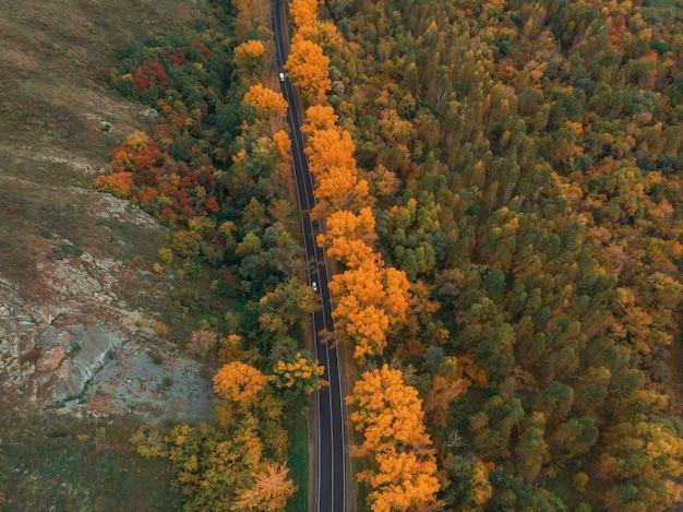 Vista aerea della strada nella bellissima foresta di altai autunno.