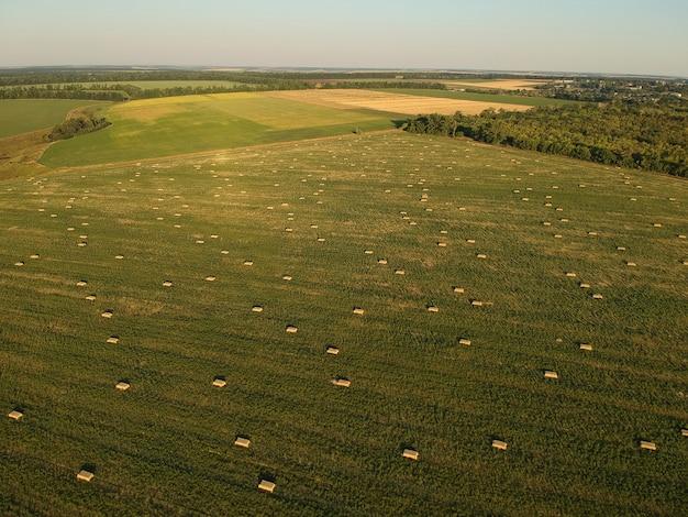 Vista aerea di fieno accatastato sul campo di grano sotto il cielo. campo di ambrosia. fotografia con drone.