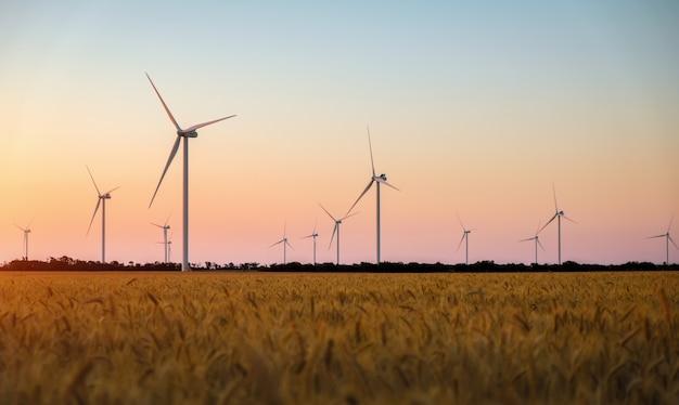Vista aerea dei generatori di turbine eoliche nel campo