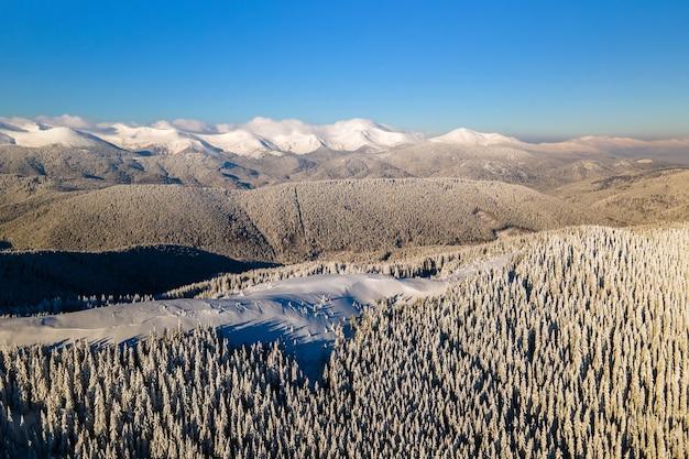 Vista aerea del paesaggio invernale con colline di montagna ricoperte di abetaia sempreverde dopo abbondanti nevicate in una fredda giornata luminosa. Foto Premium
