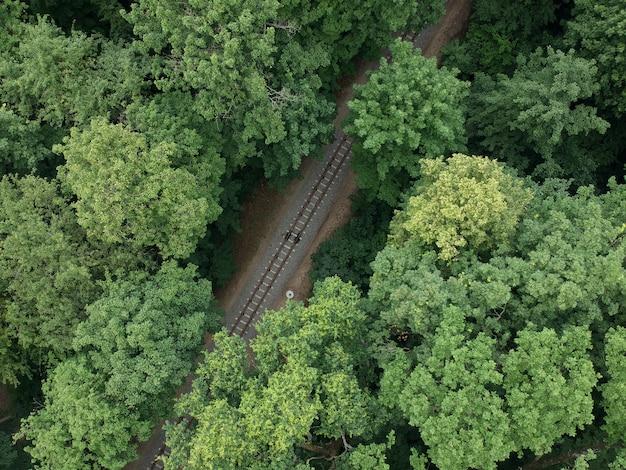 Vista aerea con un fuco di una ferrovia del treno nella foresta verde